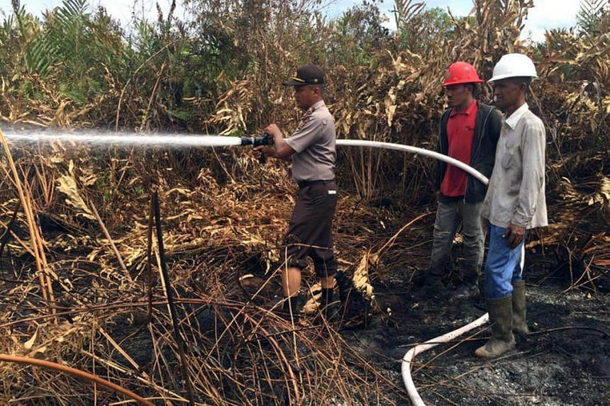 Firefighters putting out forest fires in Indonesia. Banks have financed companies responsible for rainforest destruction in South-east Asia to the tune of billions of dollars, a study showed Tuesday (Sept 6).