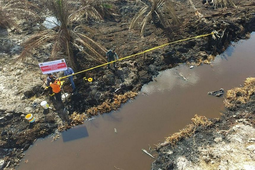 """A police line at a burnt forest concession area belonging to APSL in Riau. Ms Siti said APSL """"cannot deny"""" that it had ties to a group of men who held her officials for several hours last Friday and threatened their lives."""