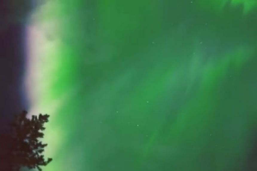A screenshot from the All About Lapland video showing the Northern Lights in action.