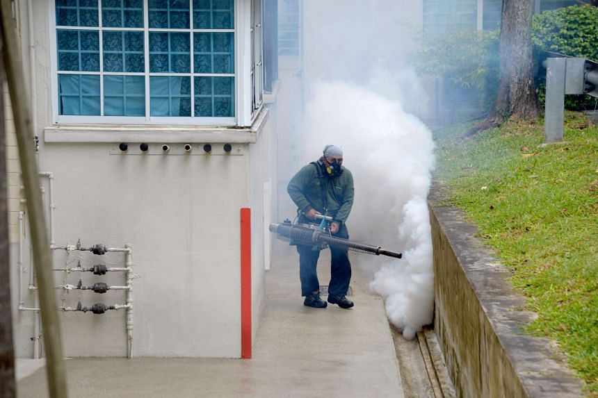 The Town Council has engaged contractors to fumigate the precinct of Bishan Street 12.