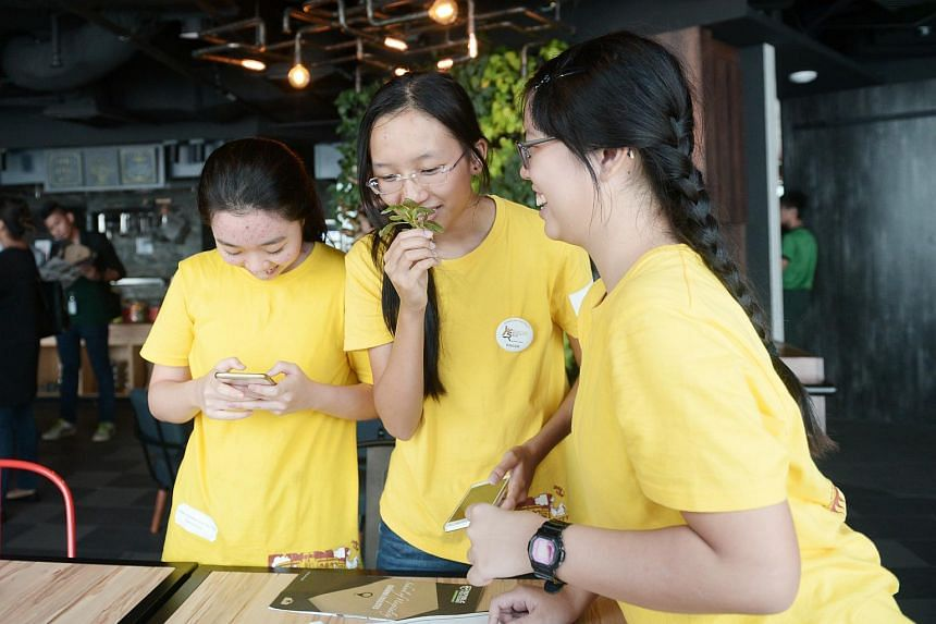 Nanyang Girls High School students smelling and guessing herbs and sauces used in cooking at the Kitchen training lab in 9th Avenue.