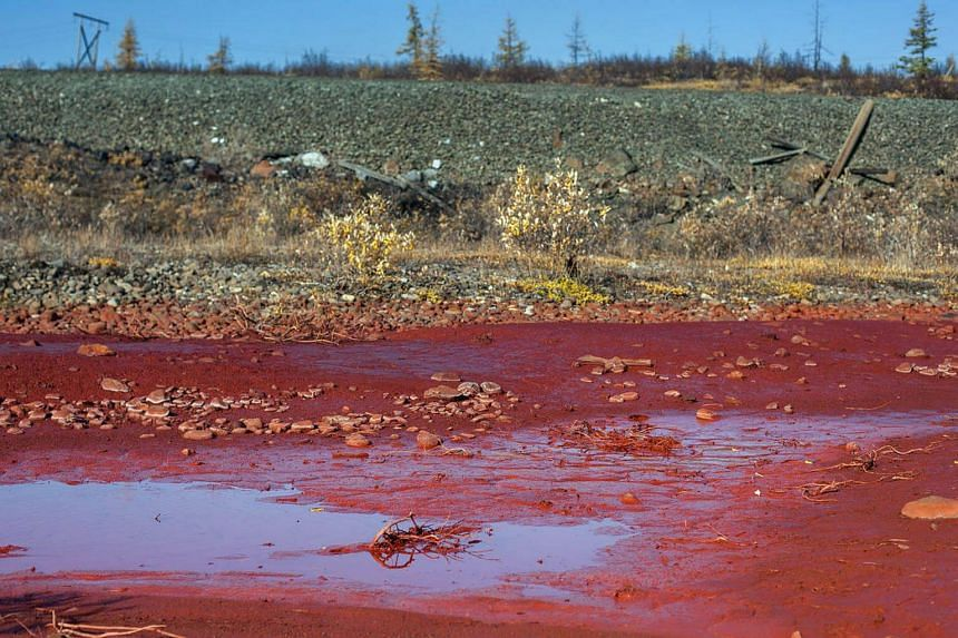 A picture taken on Sept 8, 2016 shows puddles of the bright red polluted water on the bank of the river Daldykan in the region of the city of Norilsk.