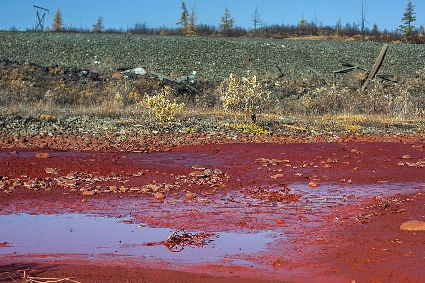 """Puddles of bright red polluted water are seen on the bank of the river Daldykan in the region of the city of Norilsk, causing Russians to nickname the tributary the """"blood river"""". The government said a possible cause of the pollution of the river is"""