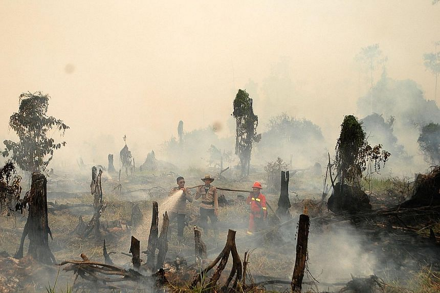 Policemen and a firefighter from a forestry company trying to extinguish a forest fire in a village in Rokan Hulu regency, Riau province, in Sumatra.