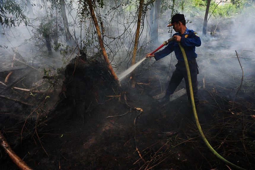 A city fire fighter sprays water on a peat land fire on the outskirts of Pontianak, West Kalimantan.