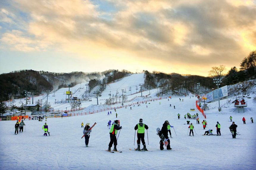 The Phoenix Park Resort is fun for all with 22 ski slopes and an indoor water park.