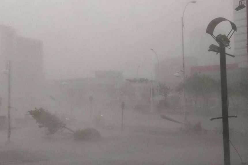 Trees are uprooted and high winds and rain from Super Typhoon Meranti lash Kaohsiung, southern Taiwan.