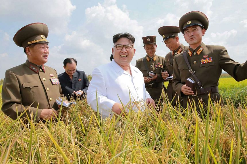 North Korean leader Kim Jong Un provides field guidance to Farm No. 1116 under KPA Unit 810, in this undated photo released by North Korea's Korean Central News Agency in Pyongyang.