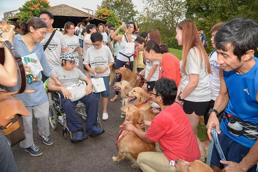 Madam Tan Mei Lee, 54 , (in blue blouse) with son Isaac, meeting the golden retrievers at the Botanic Gardens.