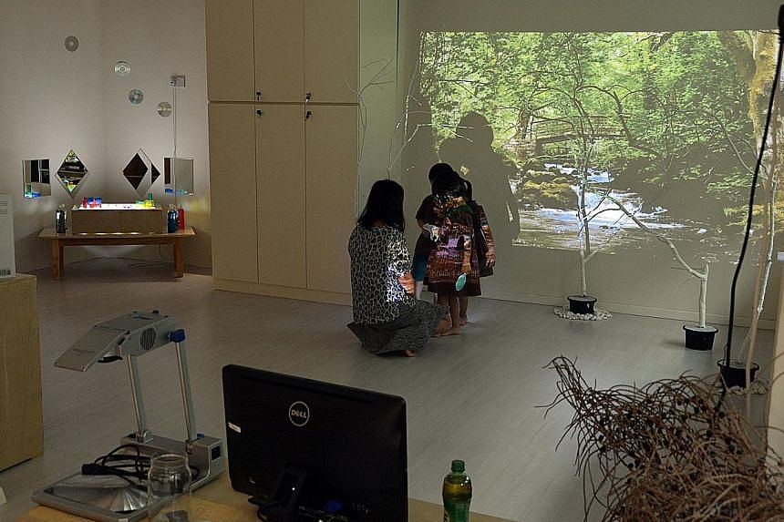 """A video of a forest stream is projected on a wall during a lesson about animals and their habitats. The use of such """"digital landscapes"""" is an idea that was borrowed from Italian pre-schools."""