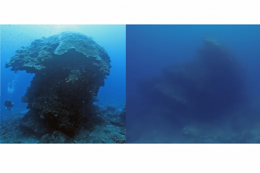 The 10m high mushroom-shaped pore coral in the water near Green Island, Taiwan before (left) and after Typhoon Meranti struck.