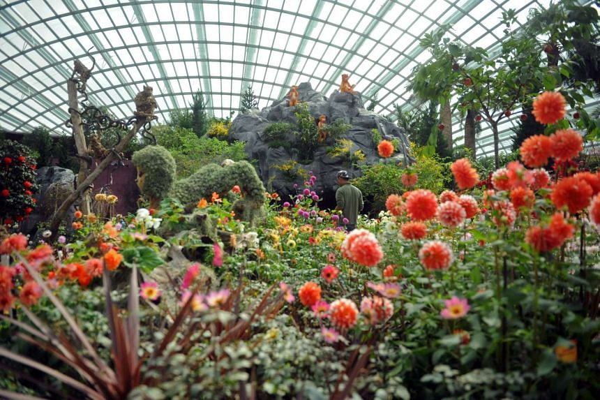 Gardens by the Bay is one of the finalists for the best attraction experience award.