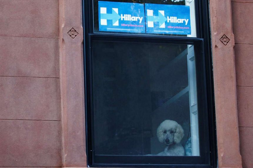 Hillary (Clinton) signs are hung on a window in the Carroll Gardens neighborhood of Brooklyn, New York, on Friday (Sept 23).