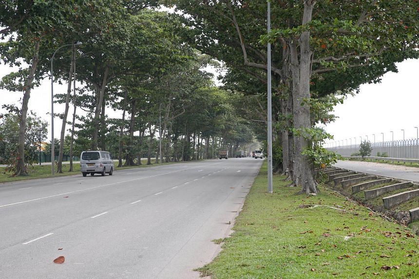 The existing road which will be closed in 2017. A new road to replace Changi Coast Road will open between April and June next year.