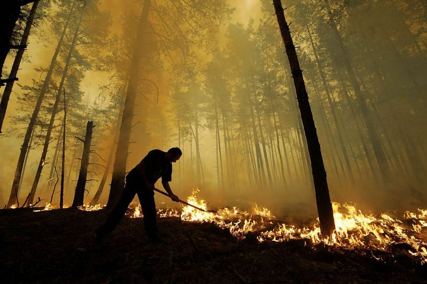 Russia's practice of leaving massive wildfires to burn out of control in sprawling stretches of Siberia puts at risk a key global resource for absorbing climate-warming emissions