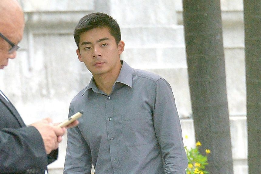 Dominique Tiang Zhang Yao has pleaded guilty to criminal intimidation, insulting the modesty of another woman and two charges of unauthorised access to a computer program.