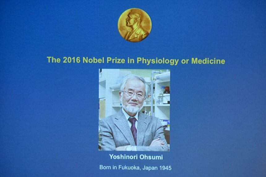 Yoshinori Ohsumi won the 2016 Nobel prize for medicine or physiology for his discovery of mechanisms for degrading and recycling cellular components.