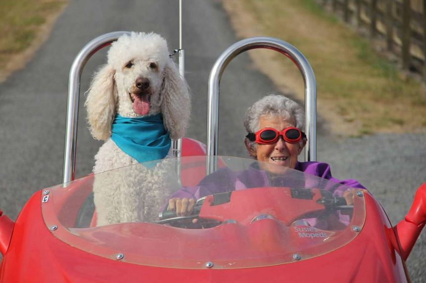 Ms Norma Bauerschmidt chose to travel with her son, daughter-in-law and their dog instead of undergoing cancer treatment.