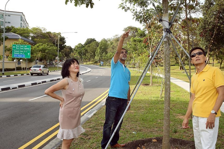 West Coast Park NC helped keep the area's leafy look despite road widening. From far left are: Dr Coral Lai, Mr Prakash Kumar Hetamsaria and Mr Ng Seng Chong.