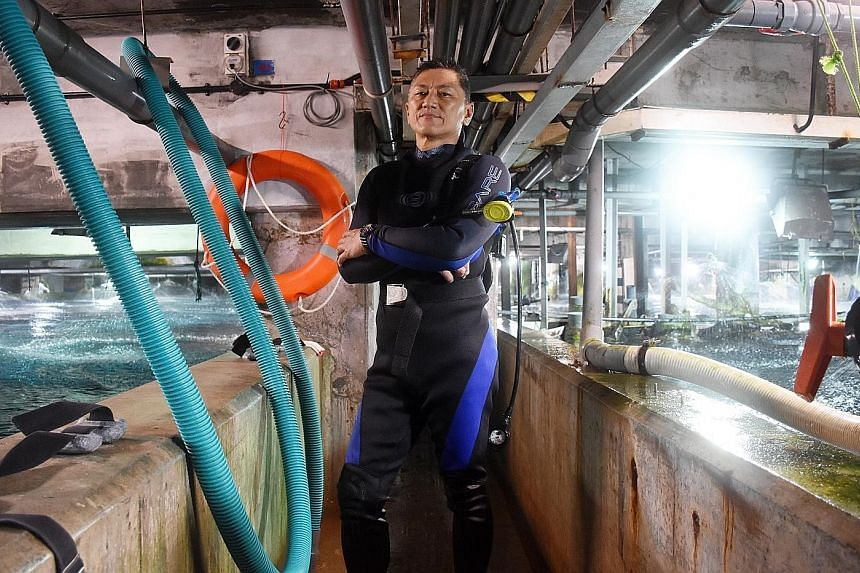 Mr Chan was one of 10 employees who stayed on to care for the animals at Underwater World Singapore while they were found new homes. Haw Par Corp, which operated UWS, says he was a veteran diver, aquarist and animal caregiver who had been caring for