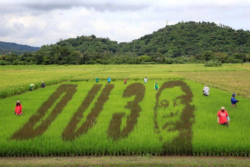 An artwork featuring the image of President Rodrigo Duterte is seen on a rice paddy in Los Banos city, Laguna province, Philippines on Oct 6, 2016.