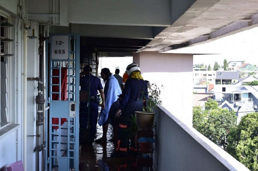 The Singapore Civil Defence Force was alerted to the fire in a 12th floor unit at Block 38, Bedok South Road, at 2.40pm on Oct 11, 2016.