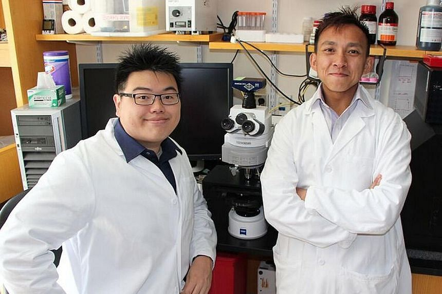 Dr Wang (left) and Dr Poh, co-founders of biotech start-up PathoVax, whose vaccine is expected to undergo clinical trials by 2018.