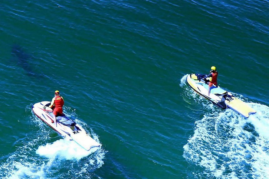Life savers chasing a shark off the Ballina's popular Lighthouse Beach following a shark attack that injured a 17-year-old surfer.