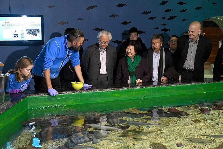 President Tony Tan Keng Yam (centre), Mrs Mary Tan and Non-Resident Ambassador to Norway Ng Ser Miang at a touch pool at the Polaria Museum in Tromso, Norway. The museum showcases Arctic animals and habitats.