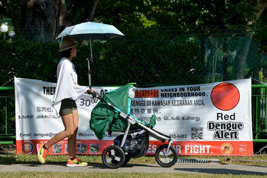 A woman pushes a stroller past a banner warning residents about dengue at Dunbar Walk.