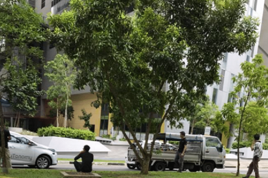 An incident involving a self-driving vehicle and a lorry occurred on Tuesday (Oct 18) morning at Biopolis Drive in the one-north business district area.