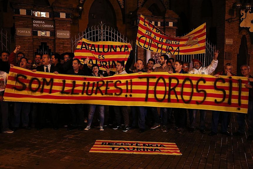Bullfighting aficionados celebrating after Spain's Constitutional Court overturned the bullfighting ban in Catalonia. The court said bullfighting is classified as part of Spain's heritage and a decision on banning it was a matter for the central gove