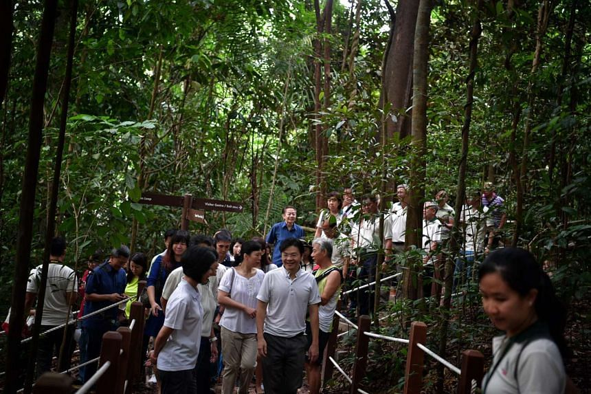 National Development Minister Lawrence Wong (front, right) walks with other members of the public along the newly re-opened South View Path at Bukit Timah Nature Reserve on Oct 22, 2016.