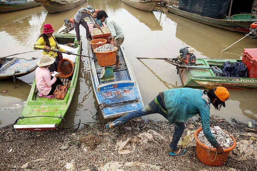 Workers weighing fish on the banks of Cambodia's Tonle Sap, South-east Asia's largest freshwater lake. The water in the lake, however, is hardly fresh as it is fouled by sewage, and agricultural and industrial pollution.