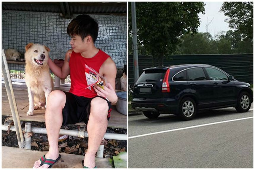 Mr Ong Ren Qin with Sayang, a dog that was injured in the accident. The car (right) that allegedly drove over Sayang.