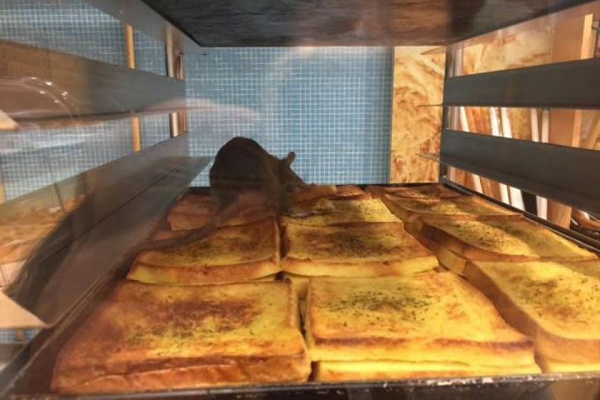 Kuala Lumpur's Mid Valley Megamall has said that it will work with tenants to improve hygiene standards after a rat was spotted on a tray of bread in a bakery at the mall.