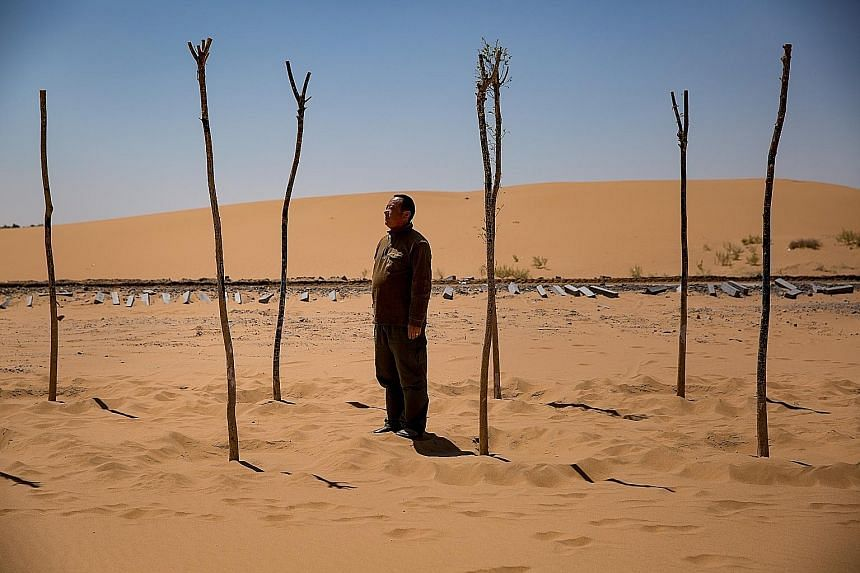 Farmer Guo Kaiming has planted rows of trees by a new cross-desert highway in an effort to block the wind and stabilise the soil.