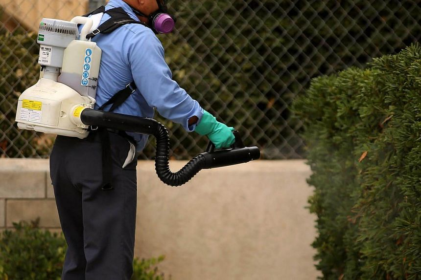 A county vector control member hand-sprays a home for adult Aedes mosquitoes in this neighborhood of San Diego, California, US on Sept 12, 2016.