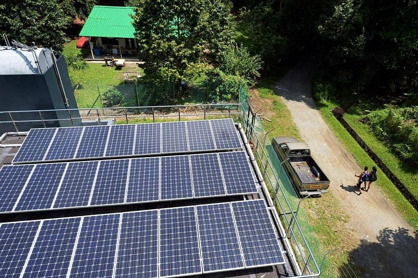 Solar panels at the Pulau Ubin Micro-grid Test-bed.