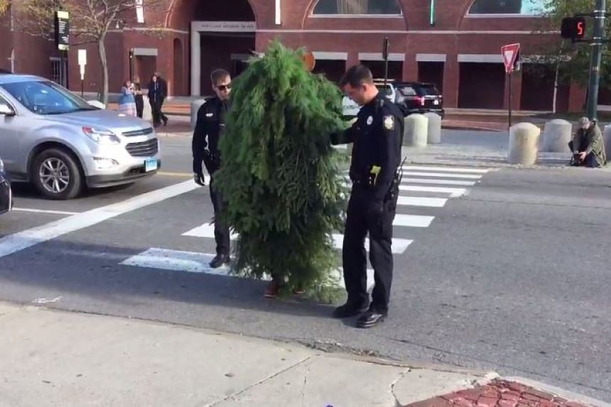 Man dressed as a tree arrested in Portland in the United States on Oct 26, 2016.