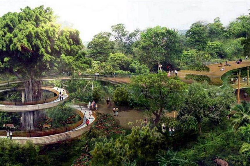 Artist's impression of the new Rainforest Park, at the Mandai nature hub.