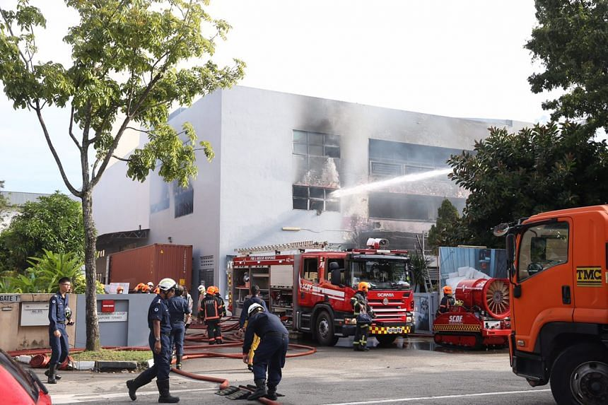 Firefighters battling the fire at Sungei Kadut at roughly 8.30am on Wednesday morning.