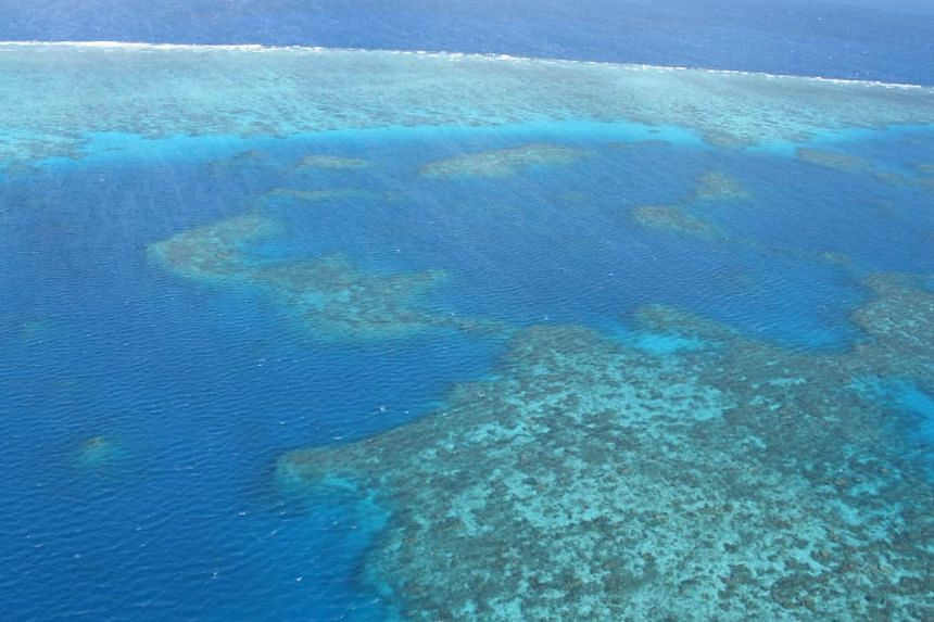 Australian rescuers managed to find a man who drifted away from his boat while diving at the Great Barrier Reef (pictured) on Nov 7, 2016.