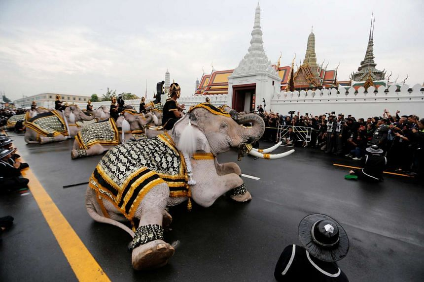 Thai mahouts riding on elephants participate during a parade to honor the late Thai King Bhumibol Adulyadej outside the Grand Palace in Bangkok on Nov 8, 2016.