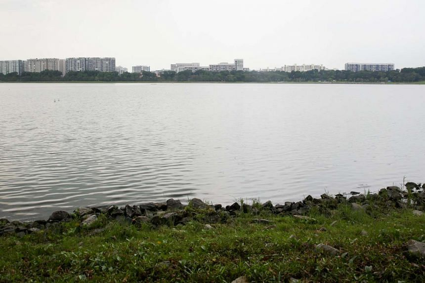 The Bedok Reservoir.