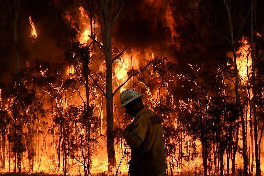 A raging fire at Medowie near Port Stephens, Australia, on Monday. Firefighters have been battling to control 11 blazes across New South Wales. More than 40 bush and grass fires are still burning but no properties are under threat, and crews have wre