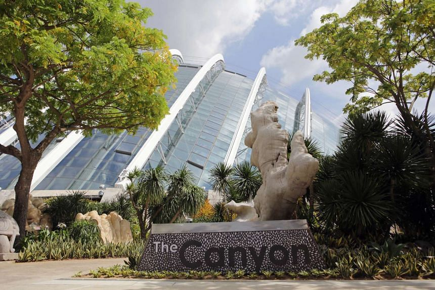 Gardens by the Bay unveils its newest attraction The Canyon, collection of massive, naturally-sculpted rocks in intriguing forms.