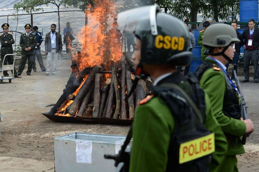 Seized rhinoceros horns are burned as policemen stand guard nearby in the suburds of Hanoi on Nov 12, 2016.