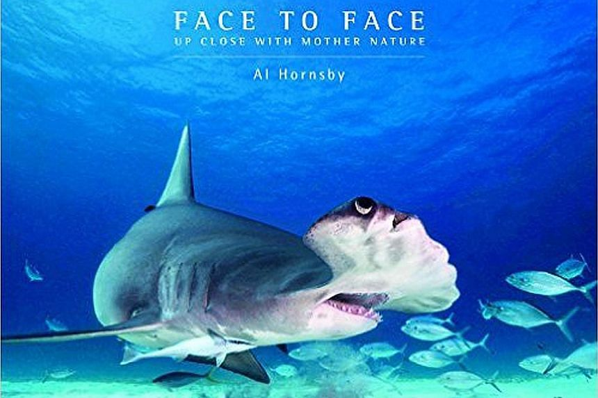 Shots taken by Al Hornsby include a peacock mantis shrimp in Derawan Islands and a Komodo dragon in Rinca Island, both in Indonesia; and his book, Face To Face Up Close With Mother Nature (above).
