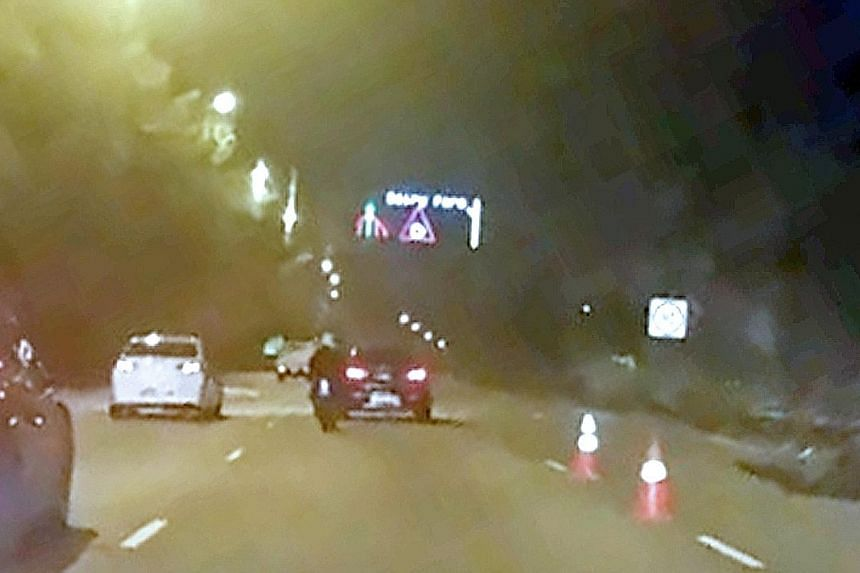 It was reported that the motorcyclist, who was not identified, lost control of his vehicle when he tried but failed to avoid hitting a wild boar on the BKE. He is now in intensive care at National University Hospital.